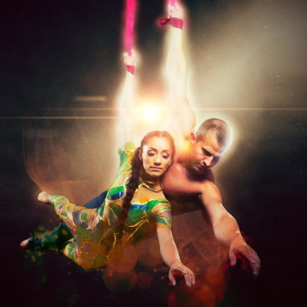 halcyon shows aerialists